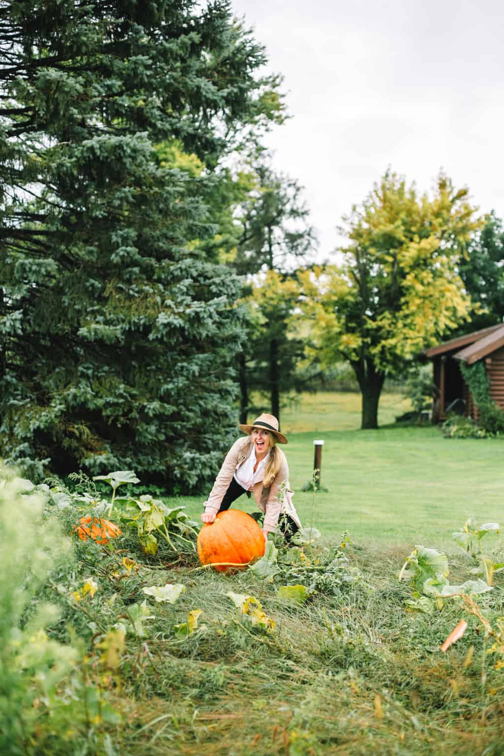 Girl holding a pumpkin on a farm.