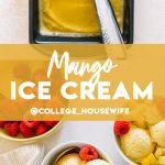 pinterest graphic for mango ice cream.